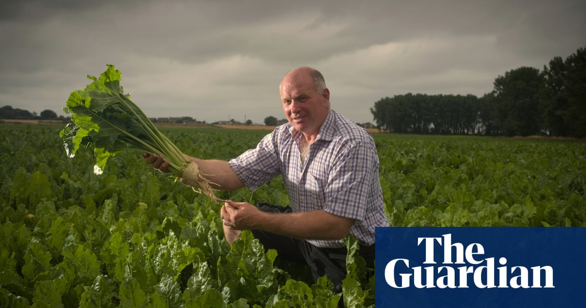 'A perfect storm': UK beet growers fear Brexit threatens their future