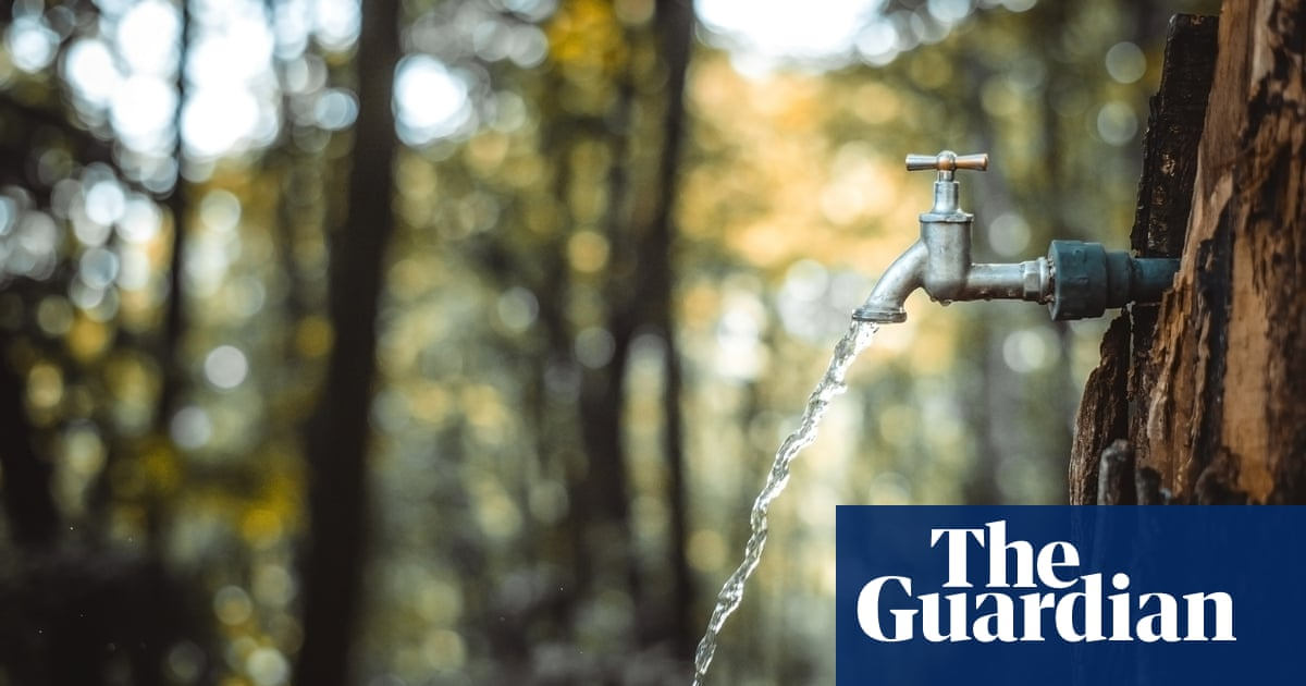 Readers reply: why does the sound of running water make us want to pee?