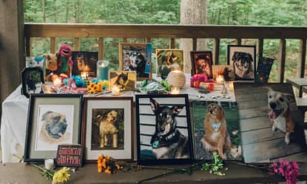 The Angels table, with tributes  to former pets