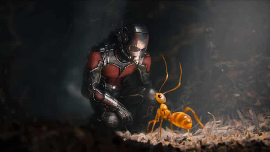 Paul Rudd in Ant-Man: you've not seen it unless you've seen it in 4DX.