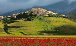 Umbria in bloom … in early summer, millions of flowers turn Castelluccio's lentil fields red.
