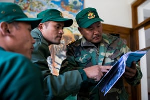 Government rangers at Jigme Singye Wangchuck national park study images of tigers captured by camera traps.