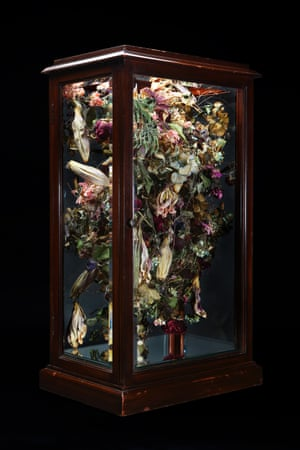 Body 2014 Wooden case, mixed flowers, copper wire