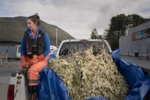 Kristina Long works for the Sitka tribe of Alaska and takes a rest after the eggs are collected and prepared for transport