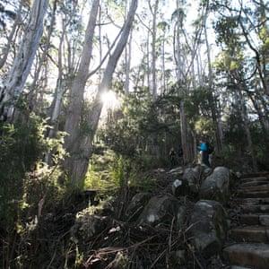 A view of Tasman Island on the Three Capes Lodge walk.