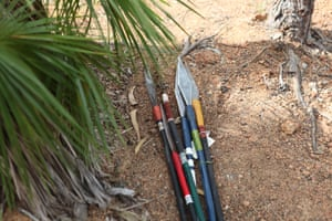 A collection of spears is stored under a tree ahead of the opening ceremony of the Garma Festival. The festival sees more than 2,600 visitors to Gulkula, on the Gove peninsula, NT, for five days of Indigenous culture and conference.