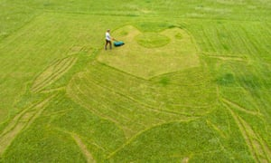 Chris Naylor, lawn artist, creating a picture of Wilbur the penguin.