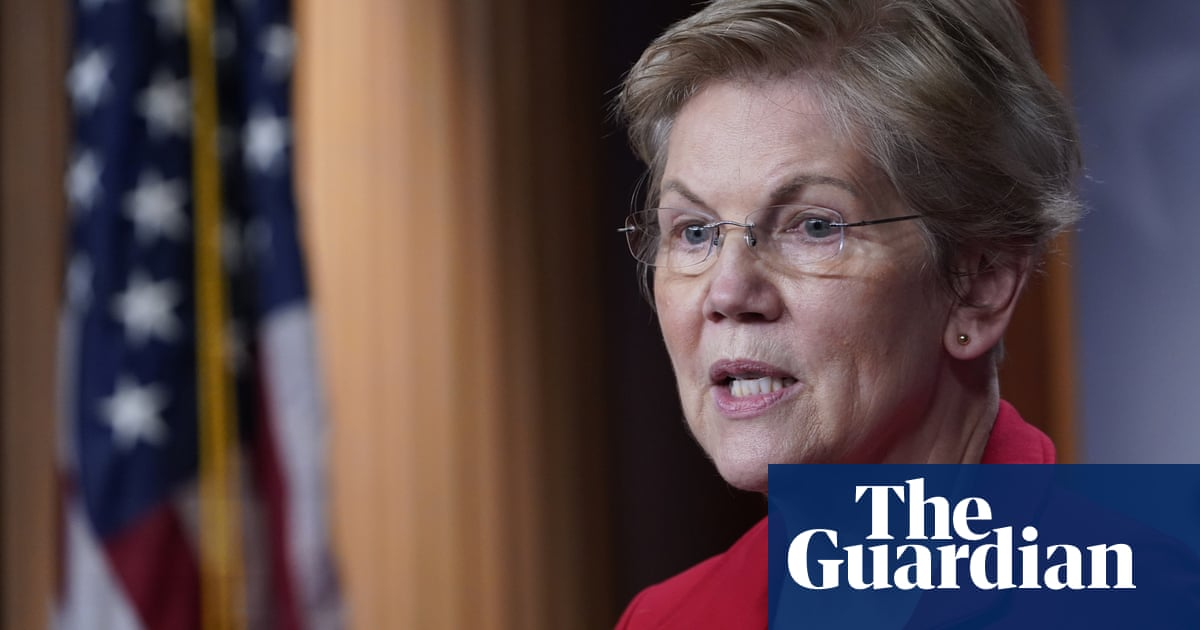 Elizabeth Warren: Democratic party was reluctant to nominate a woman in 2020