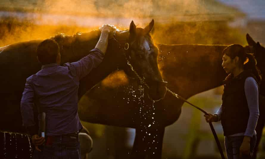 Many of horse racing's so-called 'backstretch' workers come from Central and South America, and are threatened by the recent spate of raids.