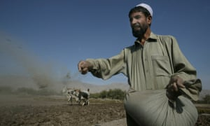 A farmer sowing poppy seeds in Nangarhar province, Afghanistan.