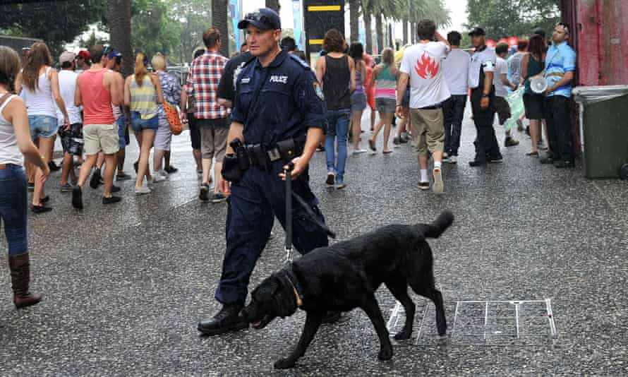 A police officer guides a drug sniffer dog through festivalgoers arriving at a music festival.