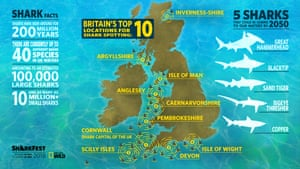 A new 'shark map of Britain' published alongside the new research illustrates the UK's shark hotspots, with Cornwall revealed to be Britain's 'shark capital' .