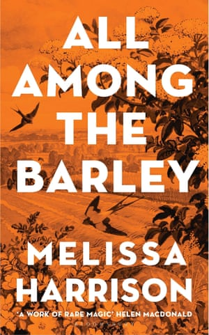 All Among the Barley by Melissa Harrison.