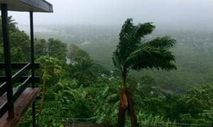 Trees blow in the heavy wind ahead of cyclone Winston's landfall onSaturday in Suva, Fiji.
