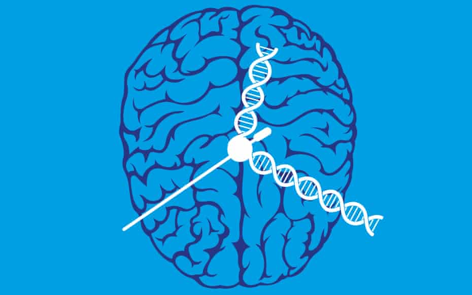Illustration by Philip Lay of a brain with clock hands made of DNA on it