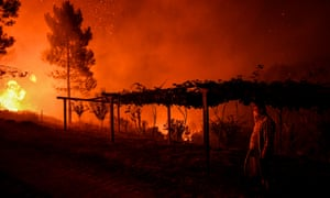A villager holds a hose as a wildfire comes close to his house in Mação, Portugal
