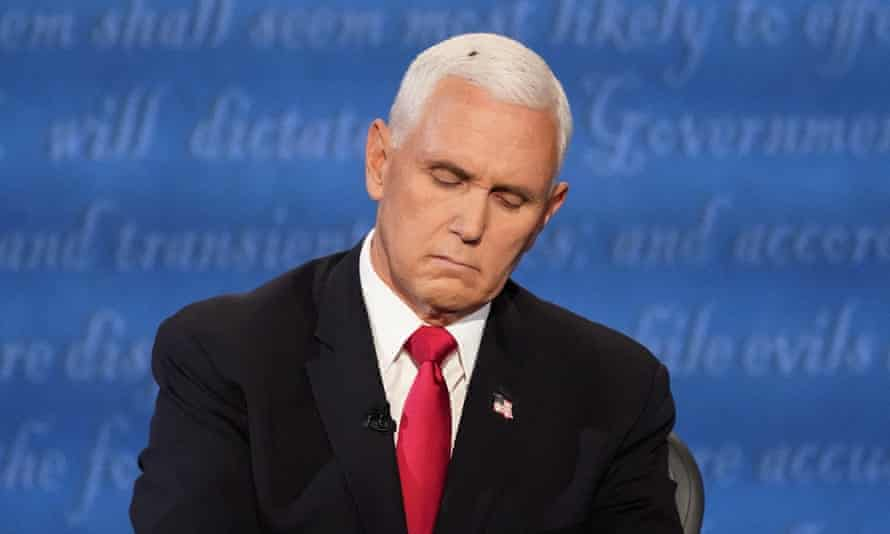 A fly on... Mike Pence.