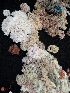 The Hyperbolic Coral Reef
