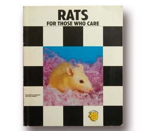 Rats for Those Who Care