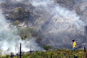 A man walks past smoldering forest lit for land-clearing