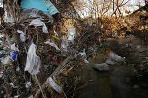 Thousands of plastic bags are left hanging on trees in the Los Angeles river channel, after being washed by rains from streets and storm drains