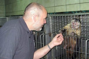 88 capuchins saved from Chilean lab
