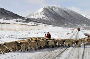 Kangding county, China: A Tibetan woman with a young girl herd a flock of sheep
