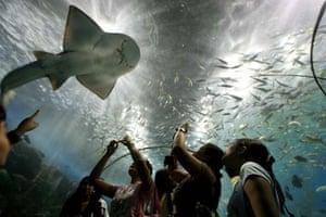 Aquarium in Manila