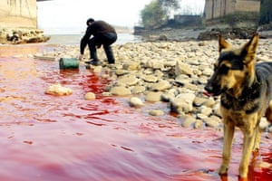 A resident takes a sample of the polluted Yellow river
