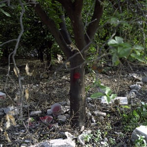 Landmine Action