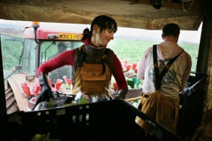 Migrant workers in Cornwall