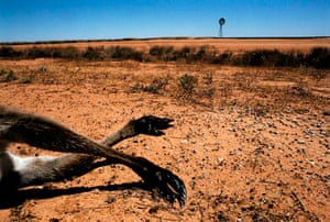 Desertification in Australia