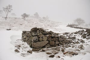 A derelict sheepfold in a blizzard