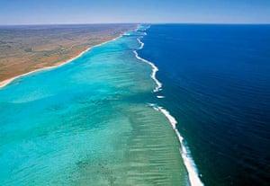Ningaloo Reef, Ningaloo Marine Park, Western Australia