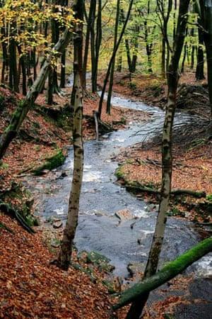 River Roddlesworth