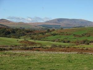 Moorland, south west Scotland