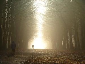 A misty walk in Norfolk