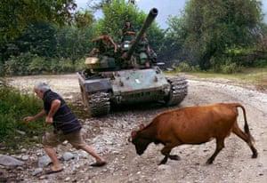 Kodori Gorge, Abkhazia:  A man pulls a cow in front of an Abkhaz tank