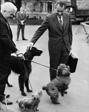 1970: President Richard Nixon pets his dogs (L-R) Irish Setter King Timahoe, Yorkshire Terrier Pasha and French Poodle Vicky, outside the White House
