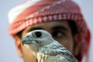 Abu Dhabi, United Arab Emirates: A man holds a falcon during the Abu Dhabi International Hunting and Equestrian Exhibition