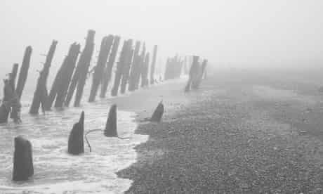 seashore by will self