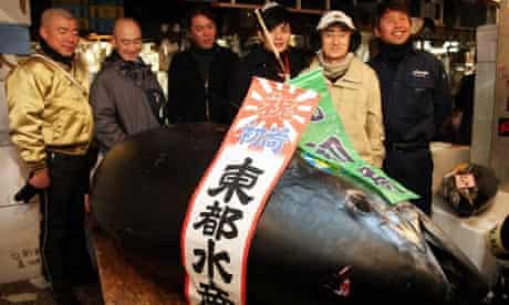 342kg Bluefin tuna sells for a record price