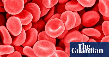 Will Self: The trouble with my blood | Books | The Guardian