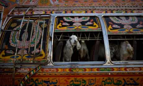 An intricately decorated truck in Pakistan