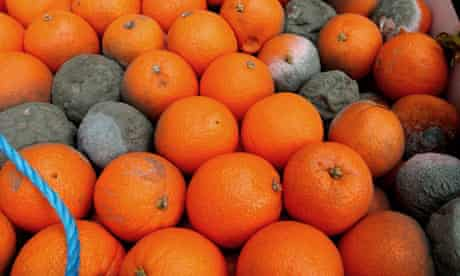 Oranges rotting on a London market stall