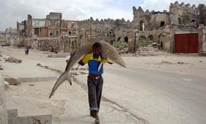 2011 World Press Photo Omar Feisal shark