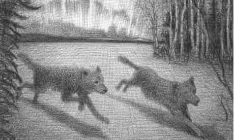 Illustration by Brian Selznick