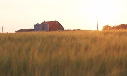 Farm in Canada