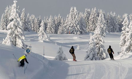 People ski past snow-covered trees along a downhill trail in Chamonix Les Houches