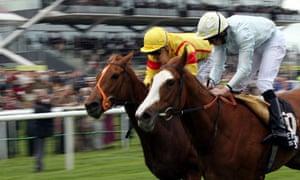 Horse race photo finish